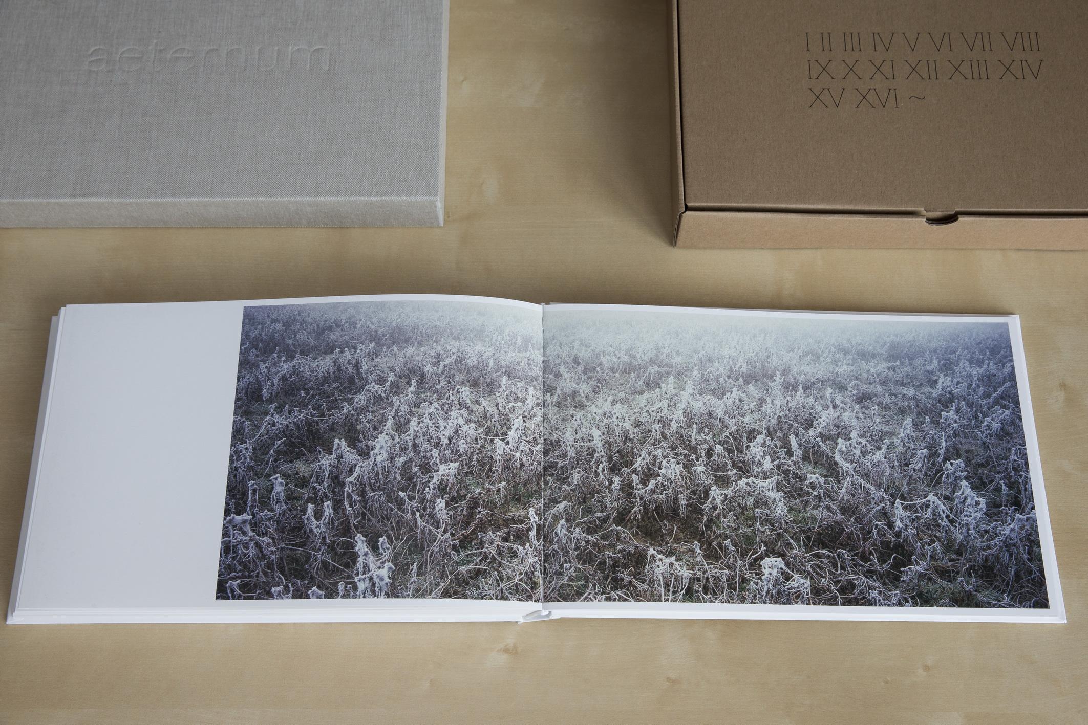 14-Album-AETERNUM-_resize.jpg